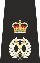 The chief constable is at the head of the police rank structure