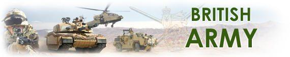 army officer essay
