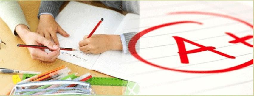 GCSE advice for parents | Tes