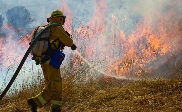 how-to-become-a-fire-fighter-firemen-putting-out-a-wild-fire