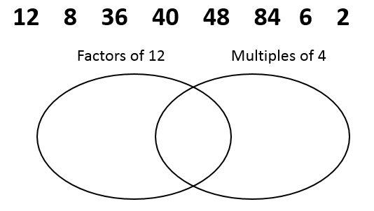 Circle Digram