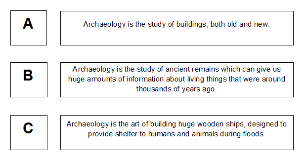 stone age question 1