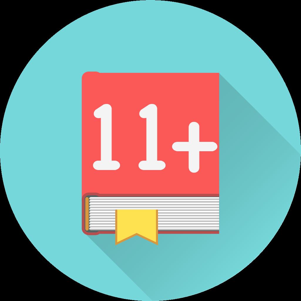 Eleven Plus Overview