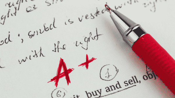 rapid study skills for students  successful essay planning