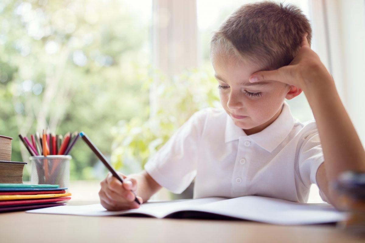 Free Independent School 11+ Practice Papers
